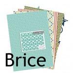 La nouveauté du lundi : Collection Brice
