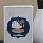 Cadeau de naissance : monogramme et carte scrapes