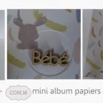 TUTO OFFERT PAR CHANRAY : mini-album en Agathe