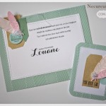 Set d'anniversaire : carte et tag