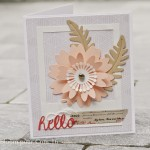 Trio de cartes par Bloom
