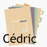 Nouveauté du lundi : collection de papiers Cédric