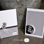 Cartes en Noir et Blanc