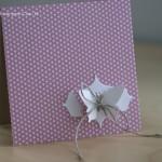 Bloom nous offre des cartes toutes en douceur
