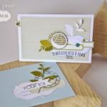Ensemble carte et enveloppe assorties