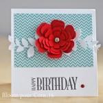 Carte d'anniversaire et carte de naissance