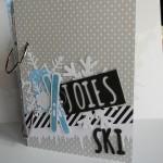 Mini-album spécial ski