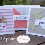Cartes-pochette