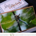 Boîte cadeau » Love Collection»